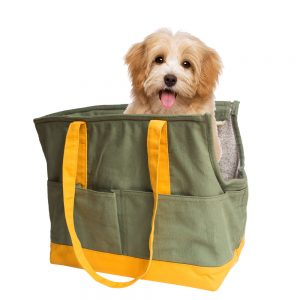 Products---Penta-pet-Tote-(3)